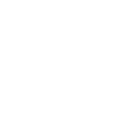 Team Associated Option Parts